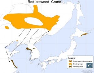 red-crowned-crane-areas